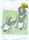 postal escarabaja